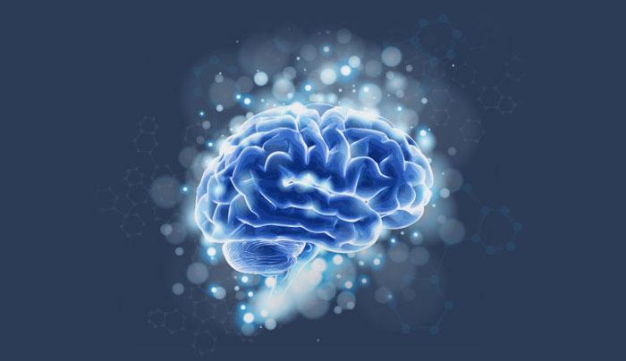 שיפור כח המוח